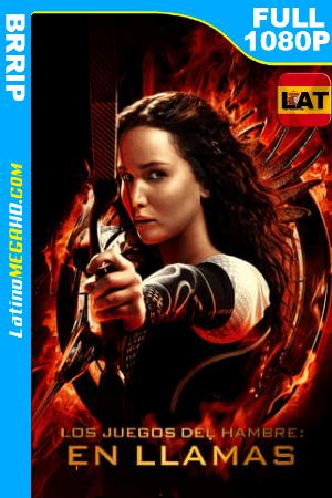 Los Juegos del Hambre: En Llamas (2013) Latino Full HD 1080p ()