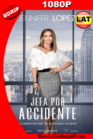 Jefa por Accidente (2018) Latino HD BDRIP 1080P ()