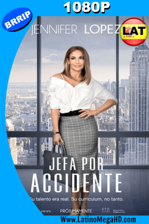 Jefa por Accidente (2018) Latino HD 1080P ()
