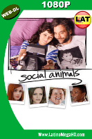 Social Animals (2018) Latino HD WEB-DL 1080p - 2018