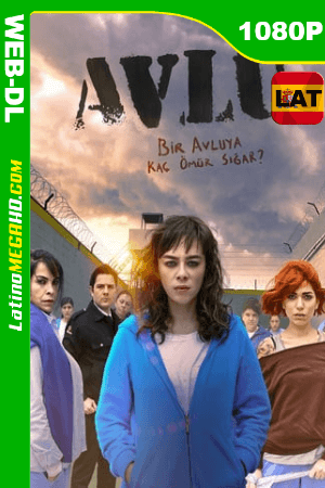 Avlu: El patio (Serie de TV) Temporada 1 (2019) Latino HD WEB-DL 1080P - 2019