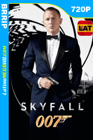 Skyfall (2012) Latino HD BRRip 720p ()
