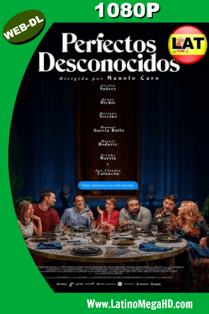 Perfectos Desconocidos (2018) Latino HD WEB-DL 1080P ()
