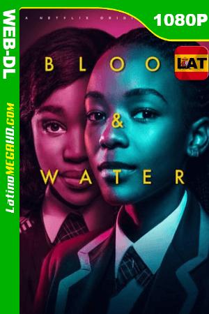 ¿Cuánto pesa la sangre? (Serie de TV) Temporada 1 (2020) Latino HD WEB-DL 1080p ()