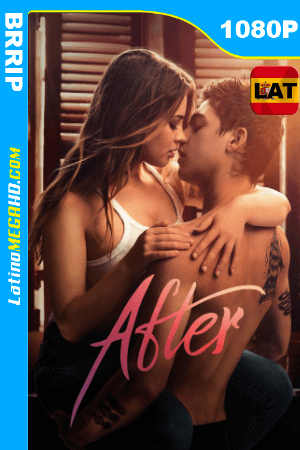 After: Aquí Empieza Todo (2019) Latino HD 1080P ()
