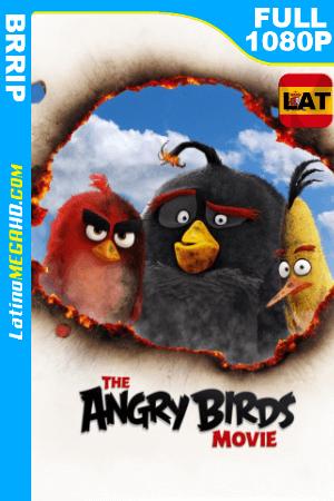 Angry Birds, la película (2016) Latino HD FULL 1080P ()
