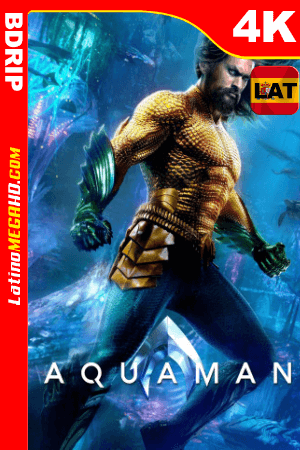 Aquaman (2018) Latino UltraHD BDRIP 2160P ()