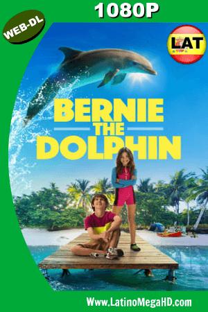 Bernie El delfín (2018) Latino HD WEB-DL 1080P ()
