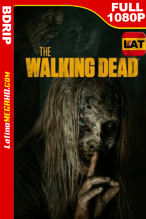 The Walking Dead Temporada 9 (2018) Latino Full HD BDRIP 1080p - 2010