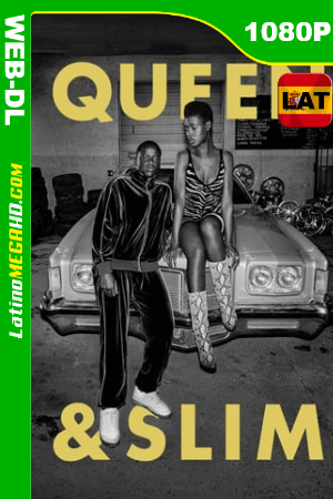 Queen & Slim (2019) Latino HD WEB-DL 1080P ()
