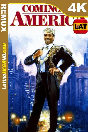 Un príncipe en Nueva York (1988) Latino UltraHD BDREMUX 2160p ()