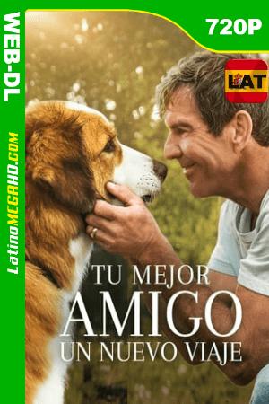 La Razón de Estar Contigo: Un Nuevo Viaje (2019) Latino HD WEB-DL 720P ()