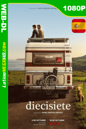 Diecisiete (2019) Español HD WEB-DL 1080P ()