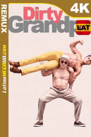 Mi abuelo es un peligro (2016) Latino UltraHD BDREMUX 2160p ()