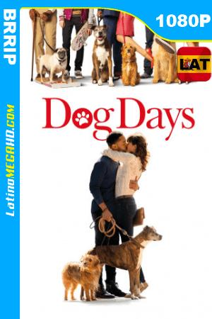 Días Perrunos (2018) Latino HD 1080P ()