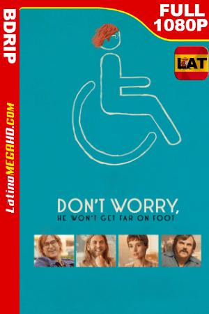 No Te Preocupes, No Irá Lejos (2018) Latino FULL HD BDRIP 1080P ()