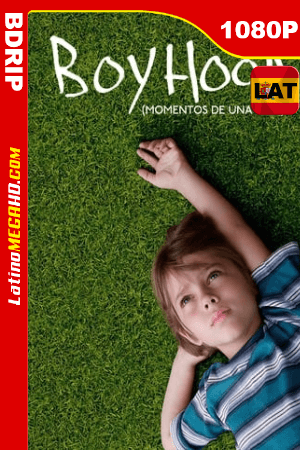 Boyhood: momentos de una vida (2014) Latino HD BDRIP 1080P ()