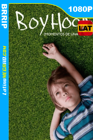 Boyhood: momentos de una vida (2014) Latino HD BRRIP 1080P ()