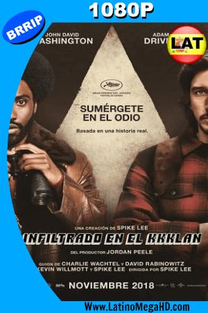 El Infiltrado Del KKKlan (2018) Latino HD 1080P ()