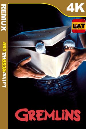 Gremlins (1984) Latino HDR Ultra HD BDRemux 2160P ()