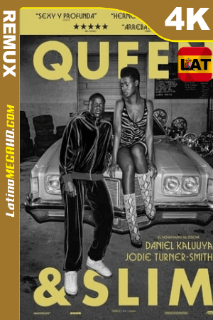 Queen & Slim (2019) Latino HDR Ultra HD BDRemux 2160P ()