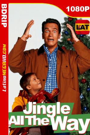 El regalo prometido Latino (1996) Latino HD BDRIP 1080P ()