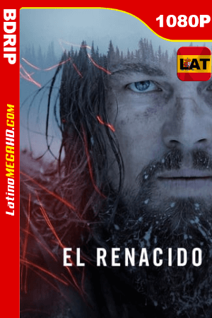 Revenant: El renacido (2015)  Latino HD BDRip 1080P ()
