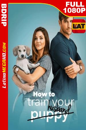 How to Train Your Husband (2018) Latino HD BDRip 1080P ()