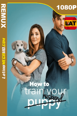 How to Train Your Husband (2018) Latino HD BDREMUX 1080P - 2018