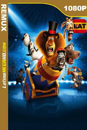 Madagascar 3: Los fugitivos (2012) Latino HD BDRemux 1080p ()