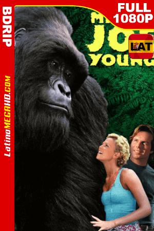 Joe: El gran gorila (1998) Latino Full HD BDRIP 1080p ()