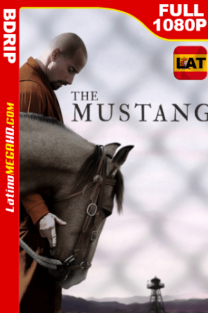 The Mustang (2019) Latino FULL HD BDRIP 1080P ()