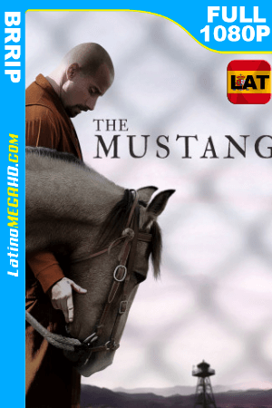 The Mustang (2019) Latino FULL HD 1080P ()