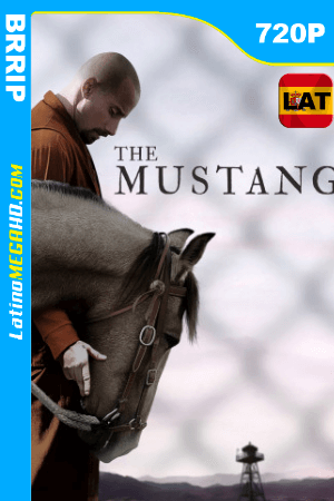 The Mustang (2019) Latino 720P ()