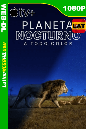 Planeta nocturno (Serie de TV) Temporada 1 (2020) Latino HD WEB-DL 1080P ()