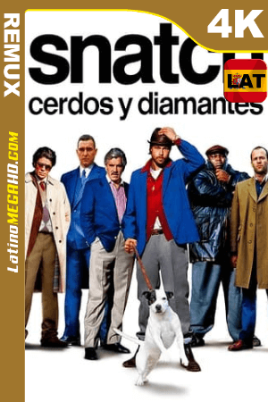 Snatch: cerdos y diamantes (2000) Latino UltraHD BDREMUX 2160p ()