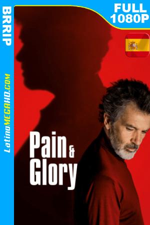 Dolor y Gloria (2019) Español FULL HD 1080P ()