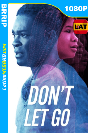 Don't Let Go (2019) Latino HD 1080P ()