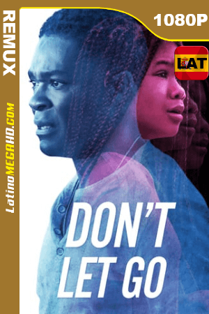 Don't Let Go (2019) Latino HD BDREMUX 1080P ()