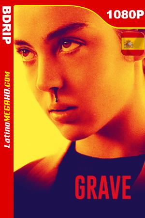 Voraz (2016) Español HD BDRip 1080P ()
