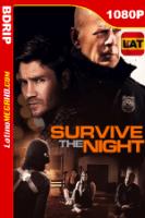Una Noche Larga (2020) Latino HD BDRIP 1080P - 2020