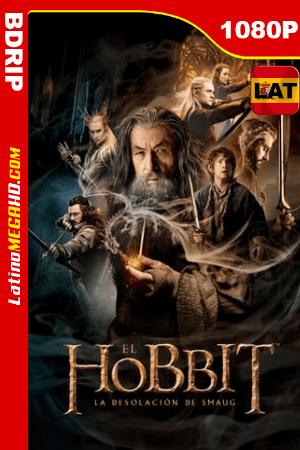 El Hobbit: La Desolación De Smaug (2013) Latino HD BDRIP 1080p ()