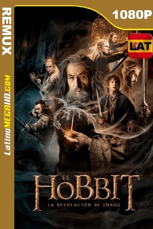 El Hobbit: La Desolación De Smaug (2013) Latino HD BDREMUX 1080p ()