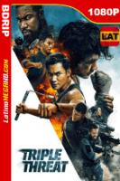 Triple amenaza (2019) Latino HD BDRIP 1080P - 2019