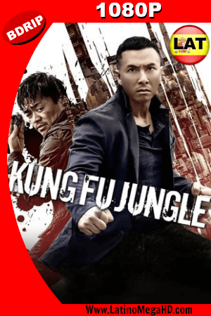 Kung Fu Jungle (2014) Latino HD BDRIP 1080P ()