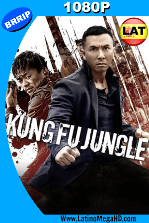 Kung Fu Jungle (2014) Latino HD 1080p ()