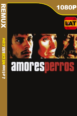 Amores perros (2000) Latino HD BDRemux 1080P ()
