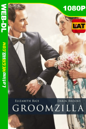 Groomzilla (2017) Latino HD WEB-DL 1080P ()
