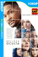 La Belleza Oculta (2016) Latino HD BBDRIP 1080p - 2016