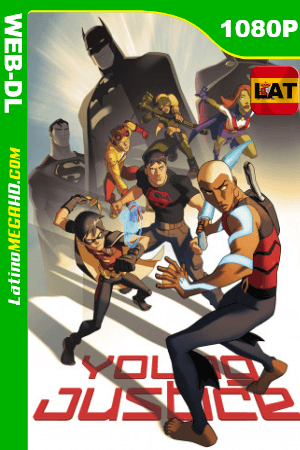 Young Justice (Serie de TV) Temporada 2 (2012) Latino HD WEB-DL 1080P ()